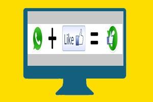 Samenstelling Whatsapp en Facebook